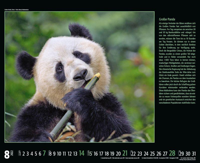 Kalender 2352422