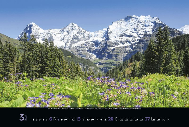 Kalender 2214822